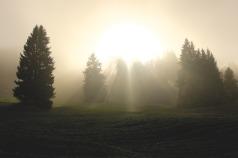 divine-light-1296309_1920